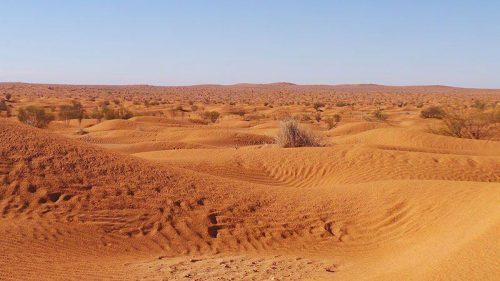 Какие пустыни самые жаркие на Земле - список, характеристика и фото 7
