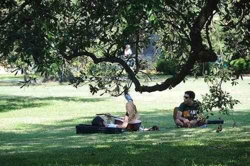 отдых под деревом