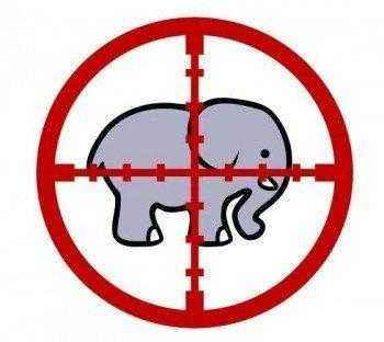 слон под прицелом