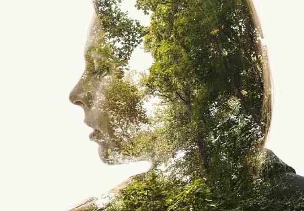 Картинки где человек помогает природе