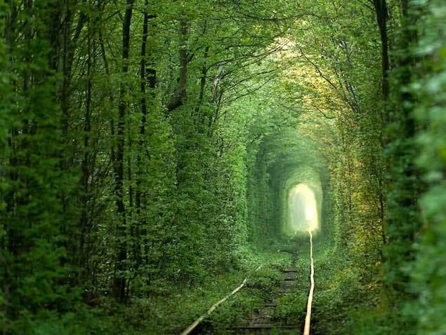 Туннель-любви,-Клевань,-Украина