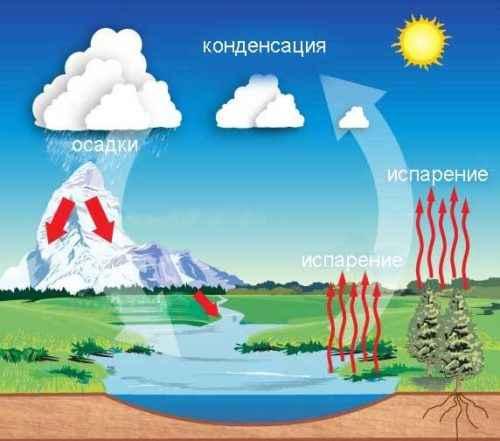 Куда текут реки? Окружающий мир 6