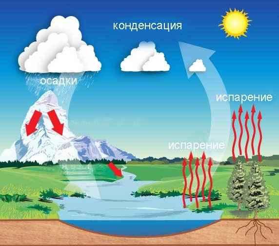 Круговорот воды в природе - Окружающий мир 2