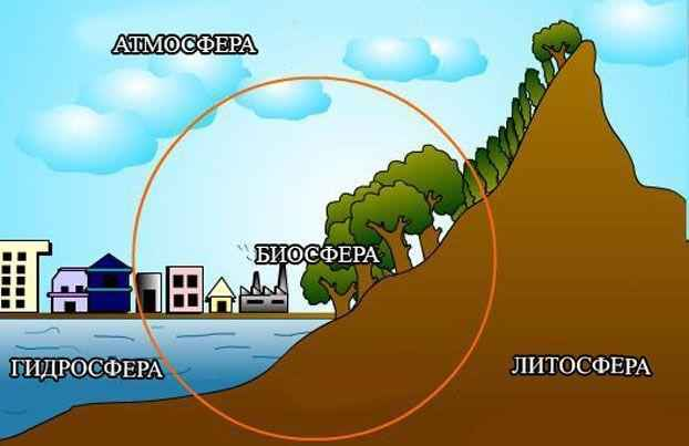 Как биосфера связана с литосферой