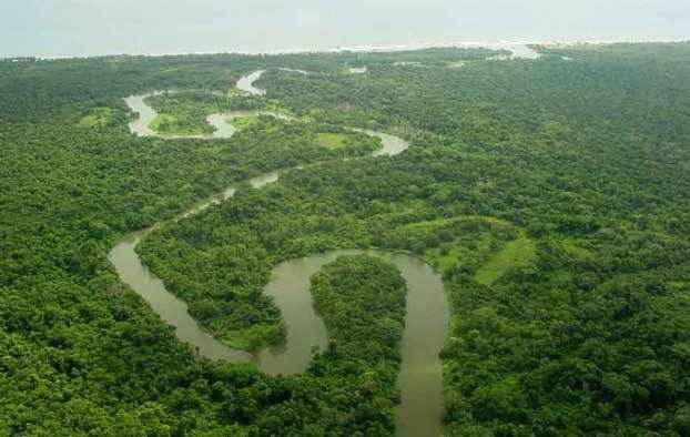 rio-platano-biosphere-forestreserve