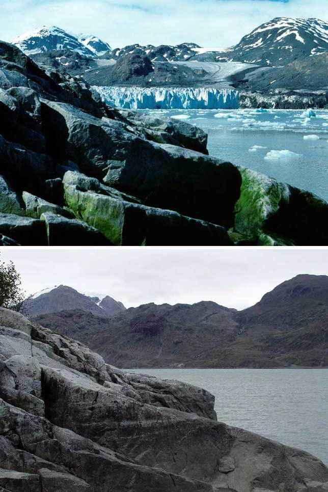 Ледник-Мьюир-3