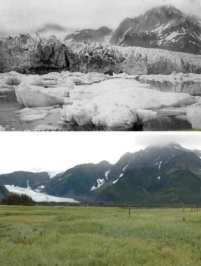 Ледник-Петерсена