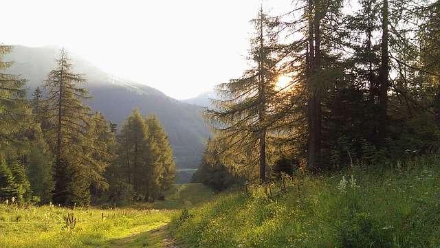 Природа Австрии 12