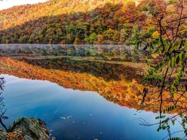 Природа Австрии 2