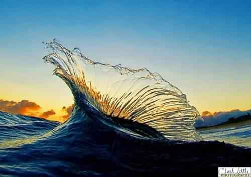 s_marlin_wave