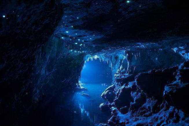 фото светлячков в пещерах Новой Зеландии