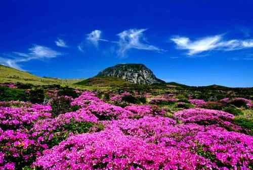 чудеса природы - Остров Чеджу