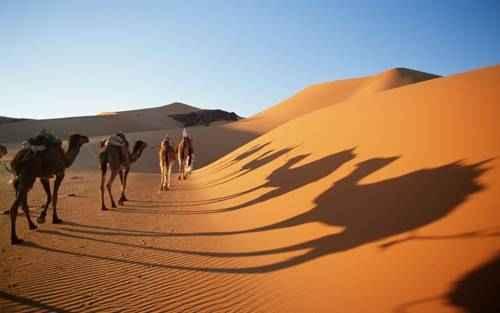 чудеса природы - Пустыня Сахара