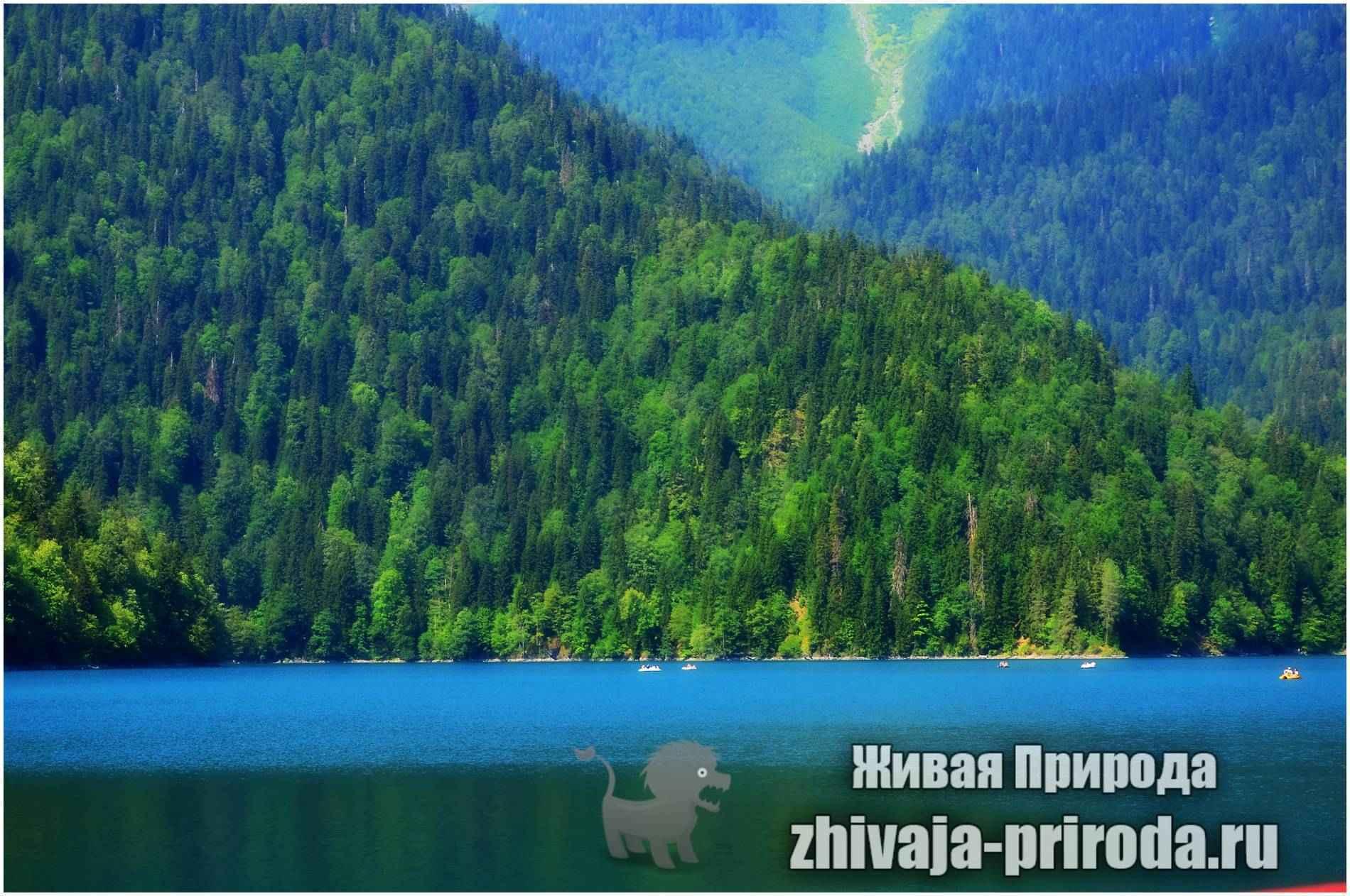 Фото пейзаж озеро Рица, Абхазия