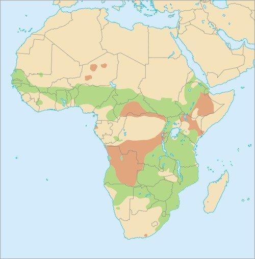 Африканский бородавочник, ареал обитания, карта Африки