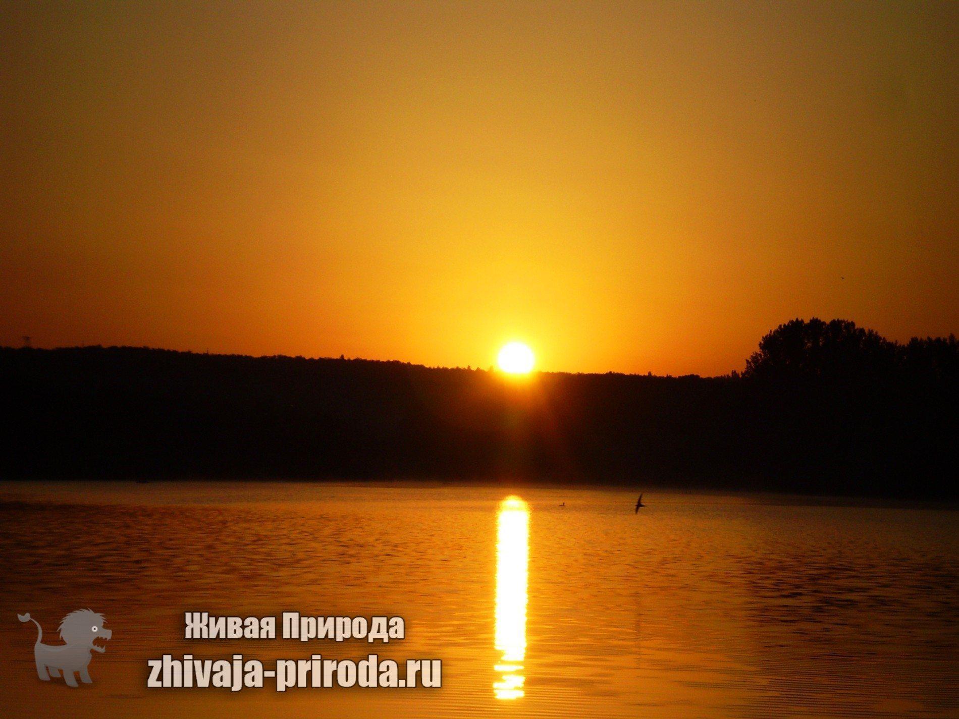 фото восхода солнца над озером