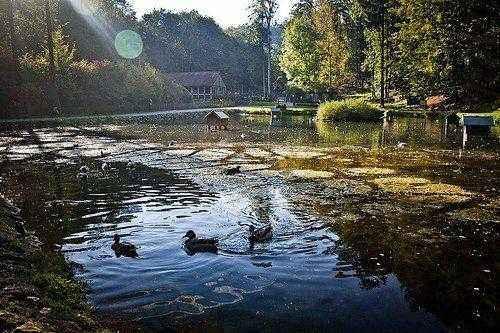 водоем парка Hundshaupten