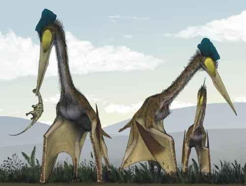 древние летающие рептилии - птерозавры