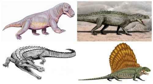 первые рептилии на Земле