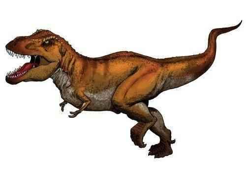 рисунок-(картинка)-Тиранозавра-Рекс