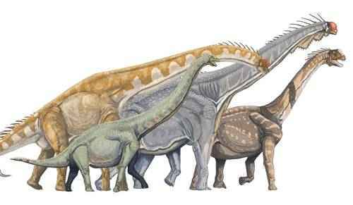 большие динозавры