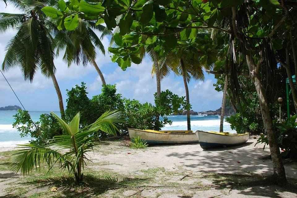 dve-lodki-palmy-plyazh-zarosli-tropiki-okean