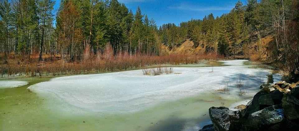 лед на лесной реке