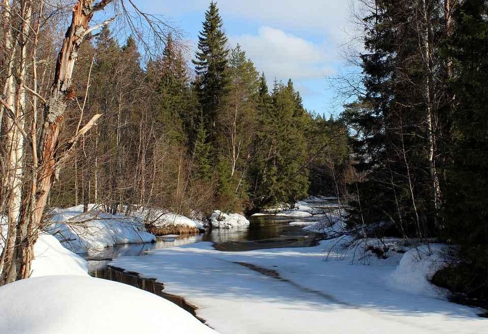 лесная речушка подо льдом
