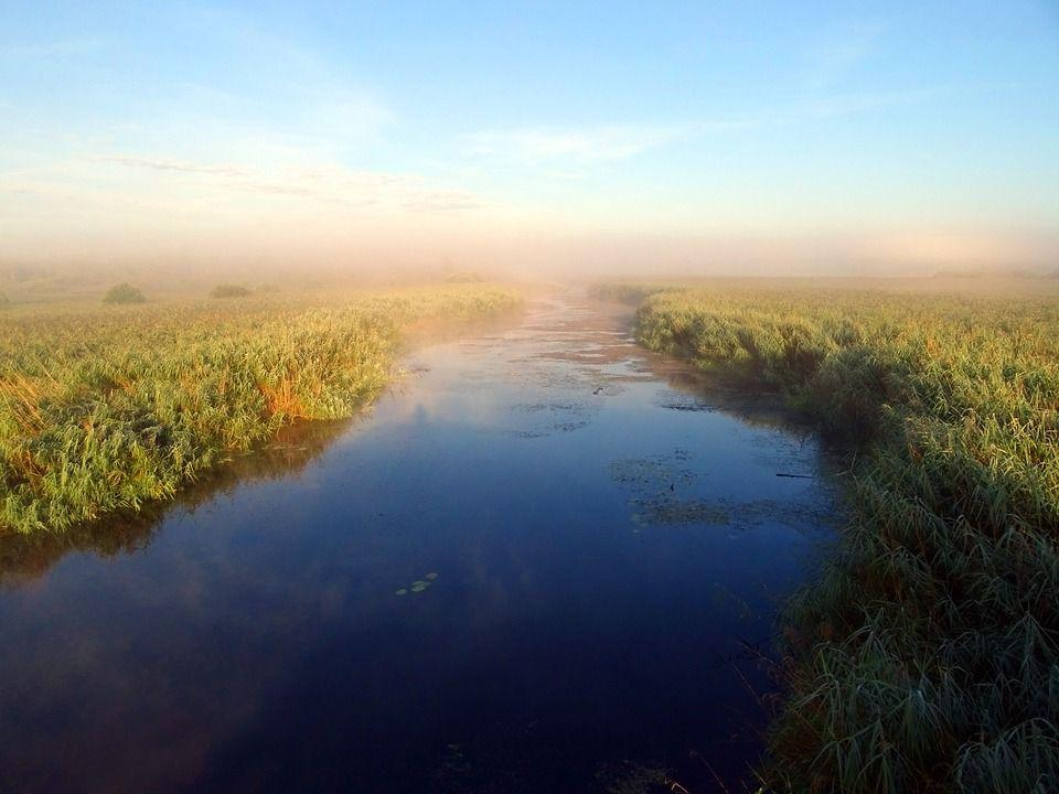 утренняя дымка на речке