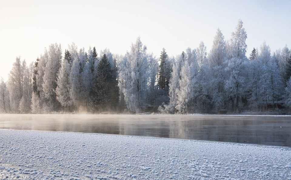 зима, река, снег, лед, утро, дымка, деревья, пейзаж