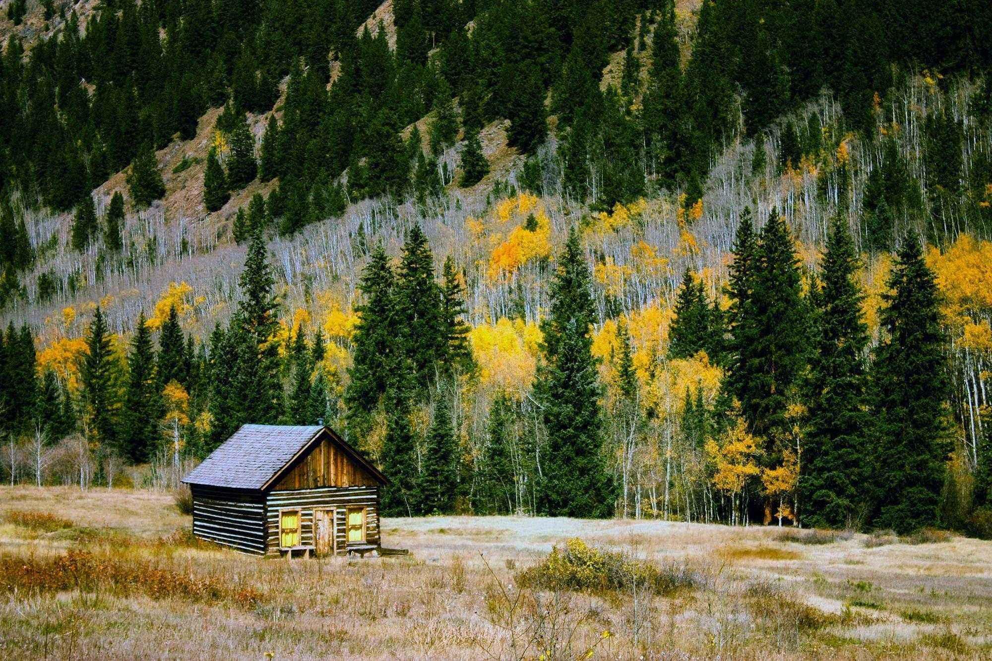 деревянный домик, осень, лес, опушка, пейзаж, природа