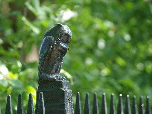 statuja-sove-v-manchestere-anglija