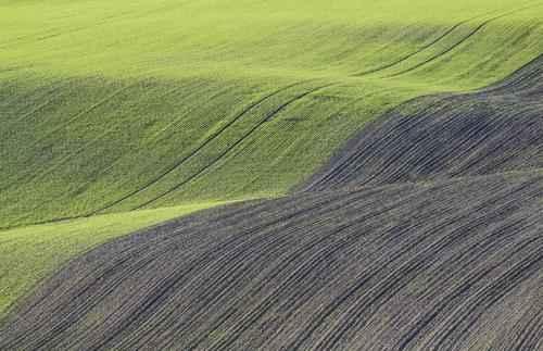 Как называется форма земной поверхности