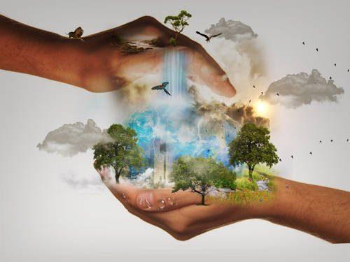 Экология России: список проблем и защита окружающей среды в стране 8