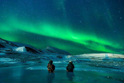 Описание и особенности природной зоны арктических пустынь 6