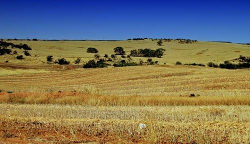 Природные ресурсы Австралии 5