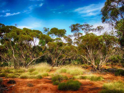 Природные ресурсы Австралии 3