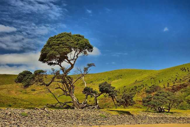 География Африки: геология, климат, пустыни, водоемы, природные ресурсы и экология 7