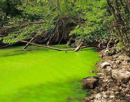 Виды, источники и причины загрязнения окружающей природной среды 4