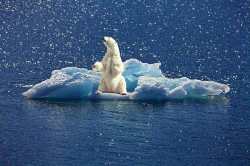 Проблема глобального изменения климата на планете и пути ее решения 3