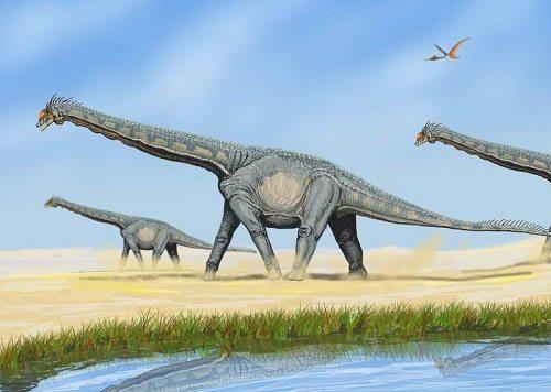 Юрский период, или юра (201-145 млн лет назад) 3
