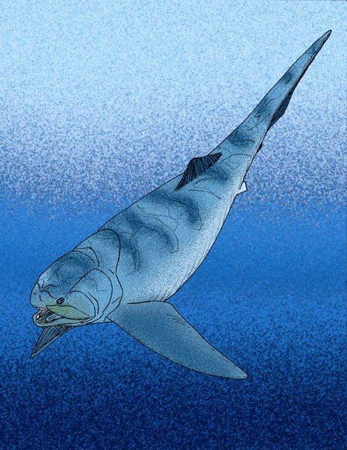Девонский период, или девон (419 - 359 млн лет назад) 3