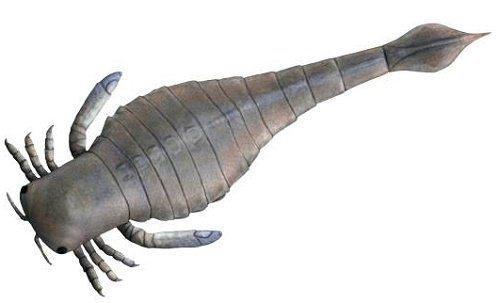 Процесс эволюции животных, или история развития фауны на Земле 12