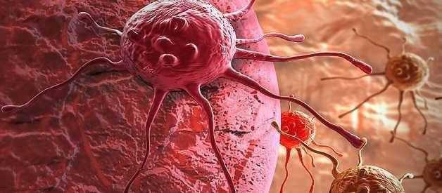 Способность раковых клеток к высвобождению и распространению обусловлена сломанным переключателем