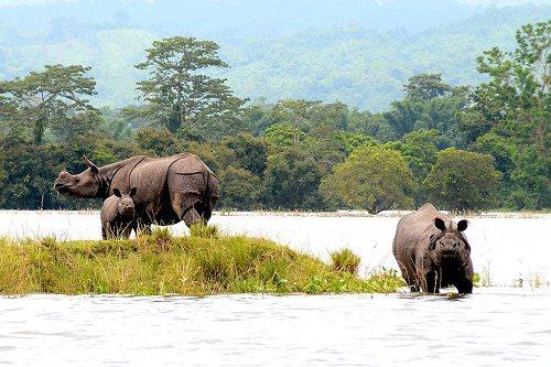 Список самых лучших и красивых национальных парков на Земле 4