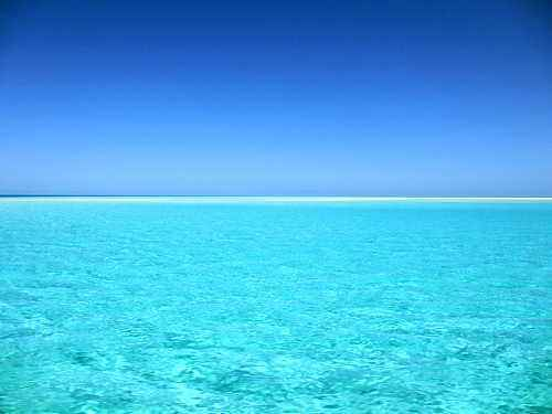 Почему морская вода бывает синего, голубого, зеленого, красного и коричневого цветов? 4