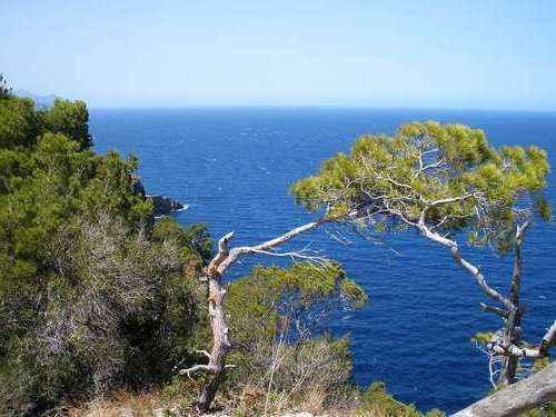 Описание, распространение и особенности средиземноморского климата 5