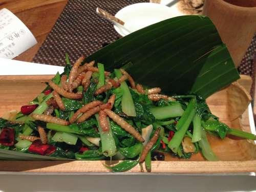 Каких насекомых едят люди? 5
