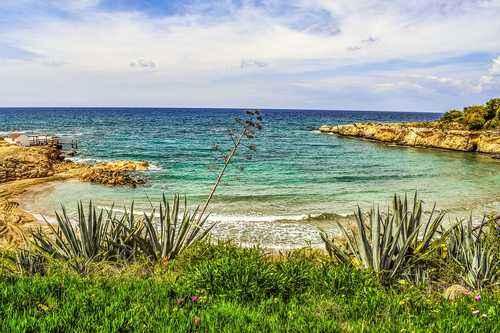 Описание, распространение и особенности средиземноморского климата 2