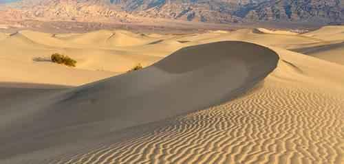 Основные формы песчаных дюн 4